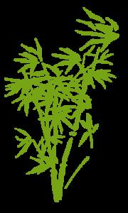 bamboo-bg